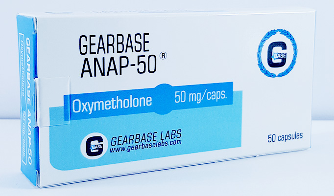 GearBase Labs